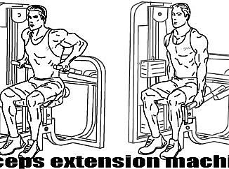 triceps extension machine
