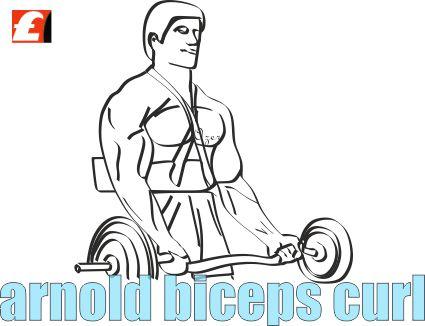 Arnold Biceps Curl Nasıl Yapılır? Resimli